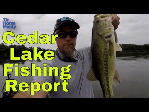Cedar Lake Fishing Report June 6th 2019