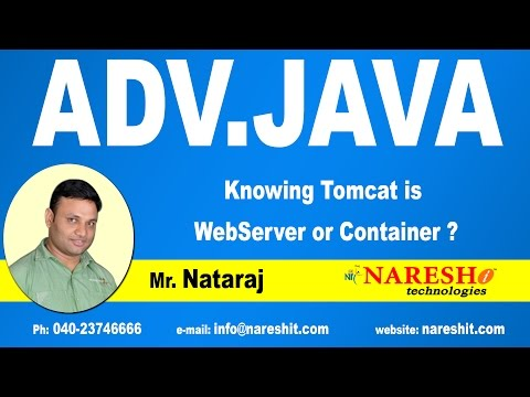 Knowing Tomcat is WebServer or Container ?