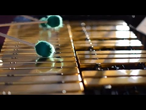 electric vibraphone - photo #3