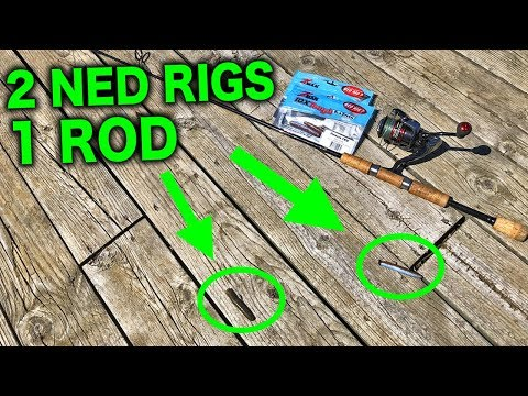 NEW Fishing Technique - THE DOUBLE NED RIG