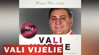 VALI VIJELIE SI ANA MARIA GOGA - DRAGOSTEA MEA NEMURITOARE (OFICIAL 2014)
