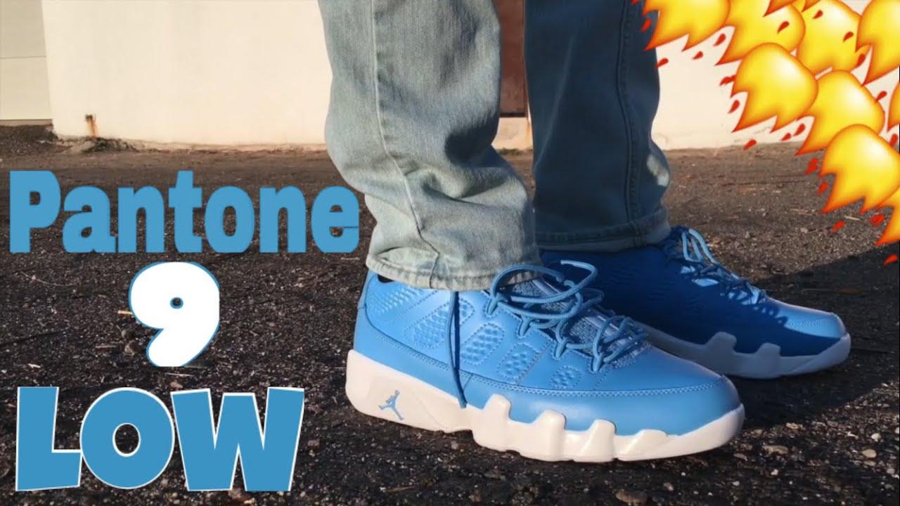 Air Jordan 9 Pantone Low Review + On