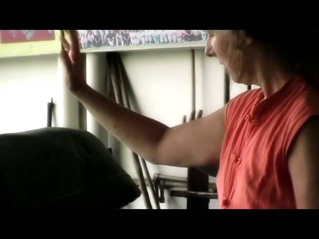 Vtisi iz vadbe - Taiji na Kitajskem v šoli mojstra Fuja