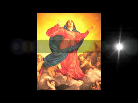 Assumption of Mary in the Bible
