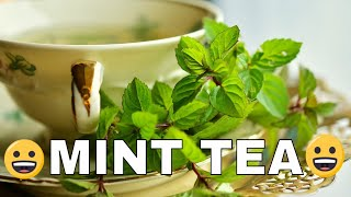 Mint Tea Recipe- How to make Mint Tea - Pudina ke Chai