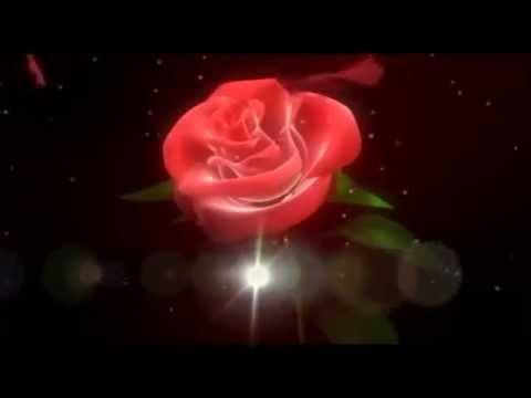 Go Lovely Rose (With Lyrics) - Z.Randall Stroope