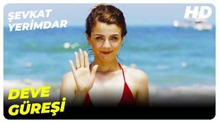 Şevkat Zorla Deve Güreşine Kaldırdı - Şevkat Yerimdar Türk Filmi