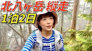 【縦走】北八ヶ岳を小屋泊まりで縦走!苔の森へ潜入!