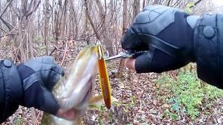 г ГУБКИН ЩУКА В НОЯБРЕ ОСЕНЬЮ НА СПИННИНГ  ну за рыбалку