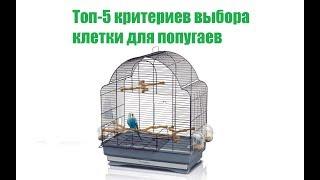 Топ-5 Критериев Выбора Клетки Для Попугая & Как Выбрать Клетку Для Попугая. Ветклиника Био-Вет