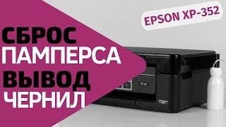 Сброс памперса и вывод отработанных чернил для Epson XP