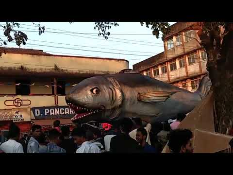 10 METERS LONG FISH FOUND MOVING ON THE ROAD