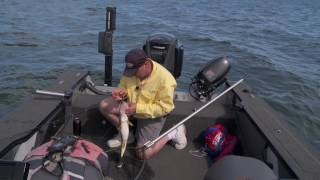 For decades Lindy Rigs have been a staple tactic for walleye fisher...