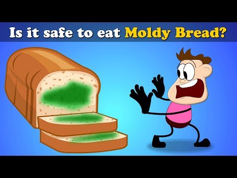 Is it Safe to eat Moldy Bread? | #aumsum #kids #science #education #children