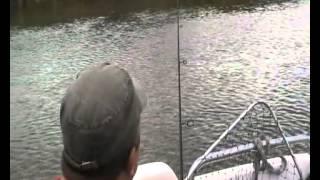Июль 2012, Сазан!!! Рыбалка на Ахтубе!.mp4(Рыбалка в июле в Селитренном на Ахтубе, Харабалыке и Банном!!! Рыболовная база