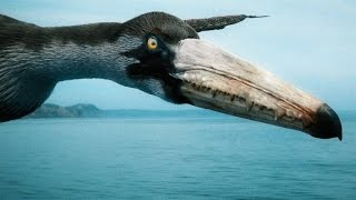 How the Largest Flying Bird of All Time Stayed Airborne thumbnail