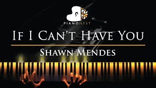 Shawn Mendes    f   Cant Have You   Piano Karaoke  Sing Along Cover with Lyrics