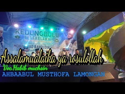Assalamualaika ya rosulollah - Habib muchsin    Ahbaabul musthofa lamongan