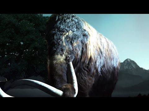 Top 10 EXTINCT ANIMALS Which May Be ALIVE