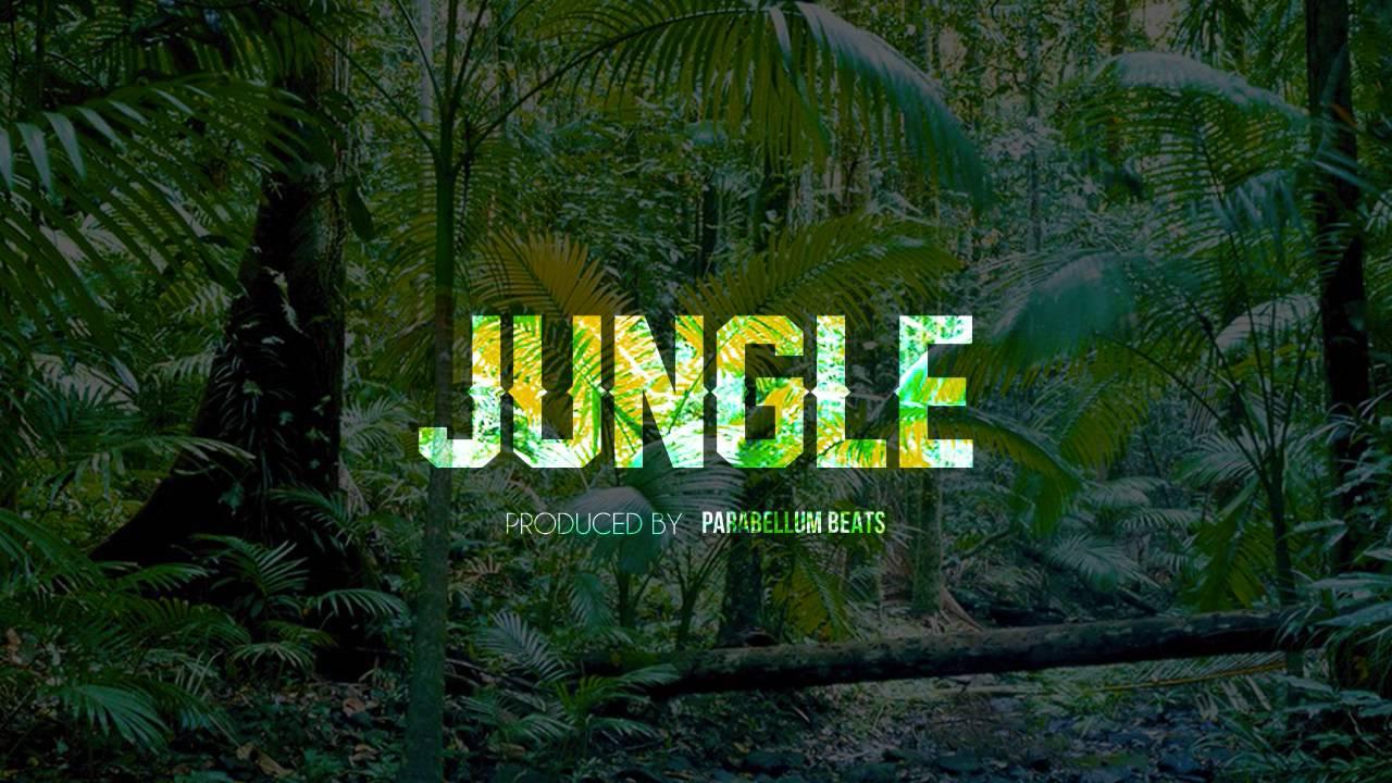 Jungle (Instrumental) *SOLD*