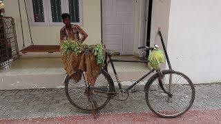 A Mobile Cycle, Fresh Vegetables & Herbs Seller / Street Vendor, Navsari, Gujarat, India.