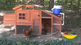 Trixie Natura Chicken Coop Assembly And Review