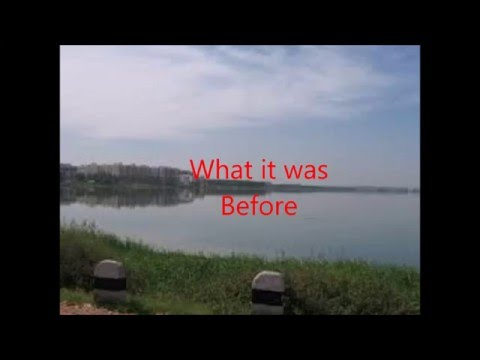 Bellandur Lake - A Short Documentary