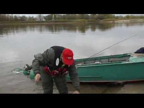 ахтуба рыбалка луневка