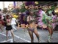 シズオカ・サンバパレードに参加の上智大学チームを撮る!