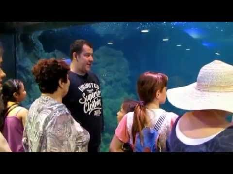 "Caspian Riviera Grand Palace экскурсия с детьми из центра ""Школьник"""