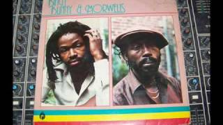 "Bingy Bunny & Morwells ""Ungrateful Baby"" Roots Radics ~ Dubwise Selecta"