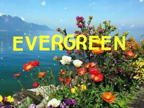 EVERGREEN with Lyrics By:Kenny Rogers