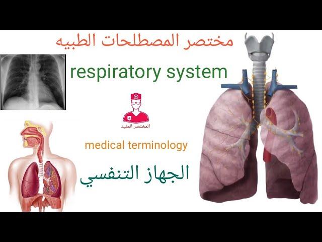 05 مصطلحات طبيه الجهاز التنفسي Medical Terminology Of The Respiratory System Youtube