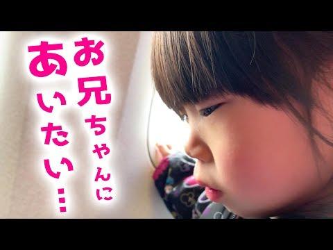 【兄妹愛】お兄ちゃんに会いたい…。パパと3歳児が飛行機に乗った日。グズリ対策も大成功!【はじめての2人旅】