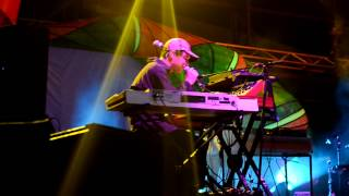 Animal Collective - My Girls live at Big Day Out Sydney 2013