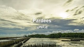Golden Words on Pardes|New Heart Touching Sad Poetry For Foreigners|Pardes Poetry|Sad Pardes Poetry