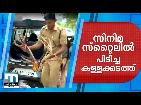 Forest Officials Chase, Nab Turtle Smugglers In Filmy Style | Mathrubhumi News