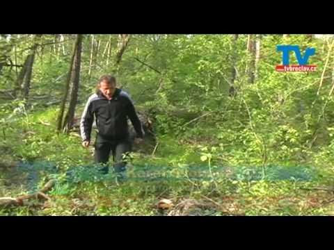 Nebezpečná tajemství Bořího lesa 2 - Břeclav - Poštorná