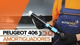 Manual del propietario Peugeot 406 Coupé en línea