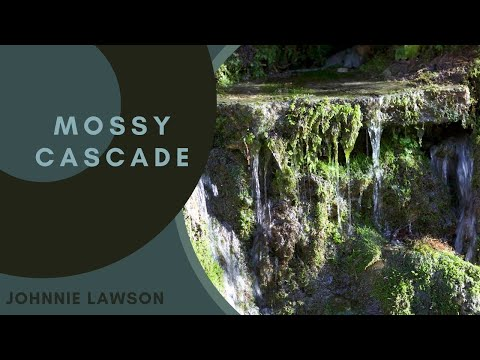nature-sounds-forest-waterfall-sound-relaxing-natural-birds-singing-music-sleeping-relaxation