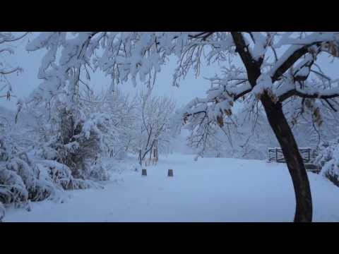 【stroll】 Sakado city,Asaba Biotope [winter] 【snow】