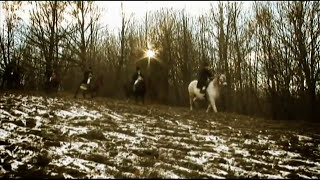Calin brateanu - Caciula HQ (2007)(Video oficial).avi