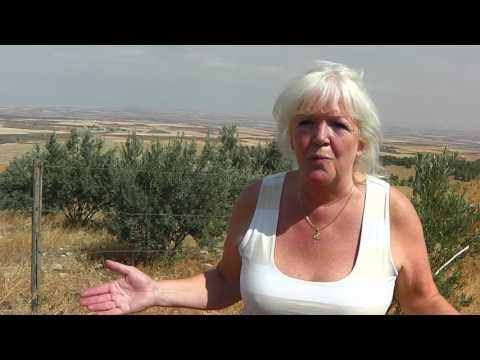 Gobeklitepe Temple Complex  with Alison Chester-Lambert M.A.