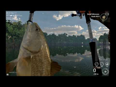 fishing-planet-florida---unique-snook-and-gafftopsail-catfish-partlycloudy-v0.7.9