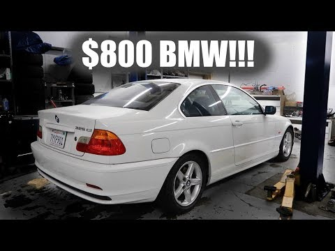 $800 BMW! Would YOU buy it?