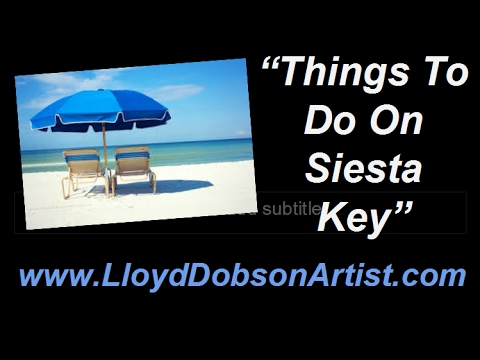 Things To Do On Siesta Key