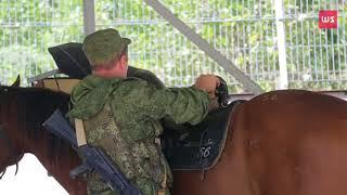 Перевозка собак верхом на лошади