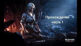 Ведьмак 3 Дикая Охота прохождение на 100% часть 1