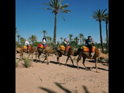 Travel : Marrakech and Agadir, Morocco