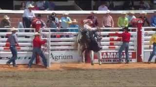 Day 1 rodeo highlight action from the Calgary Stampede -- July 4, 2014